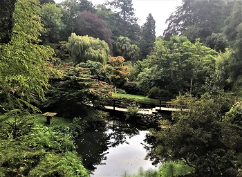 Japanese Garden at Powerscourt, Ireland